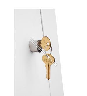 Phoenix Extra Standard Pin Key (Cylinder)