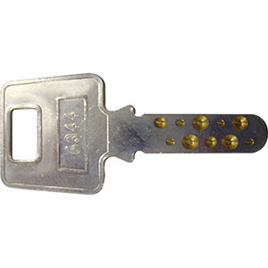 Phoenix Extra High Security Pin Key (Dimple)