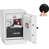 Phoenix Data Combi DS2501F Safe